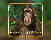Heart of The Jungle